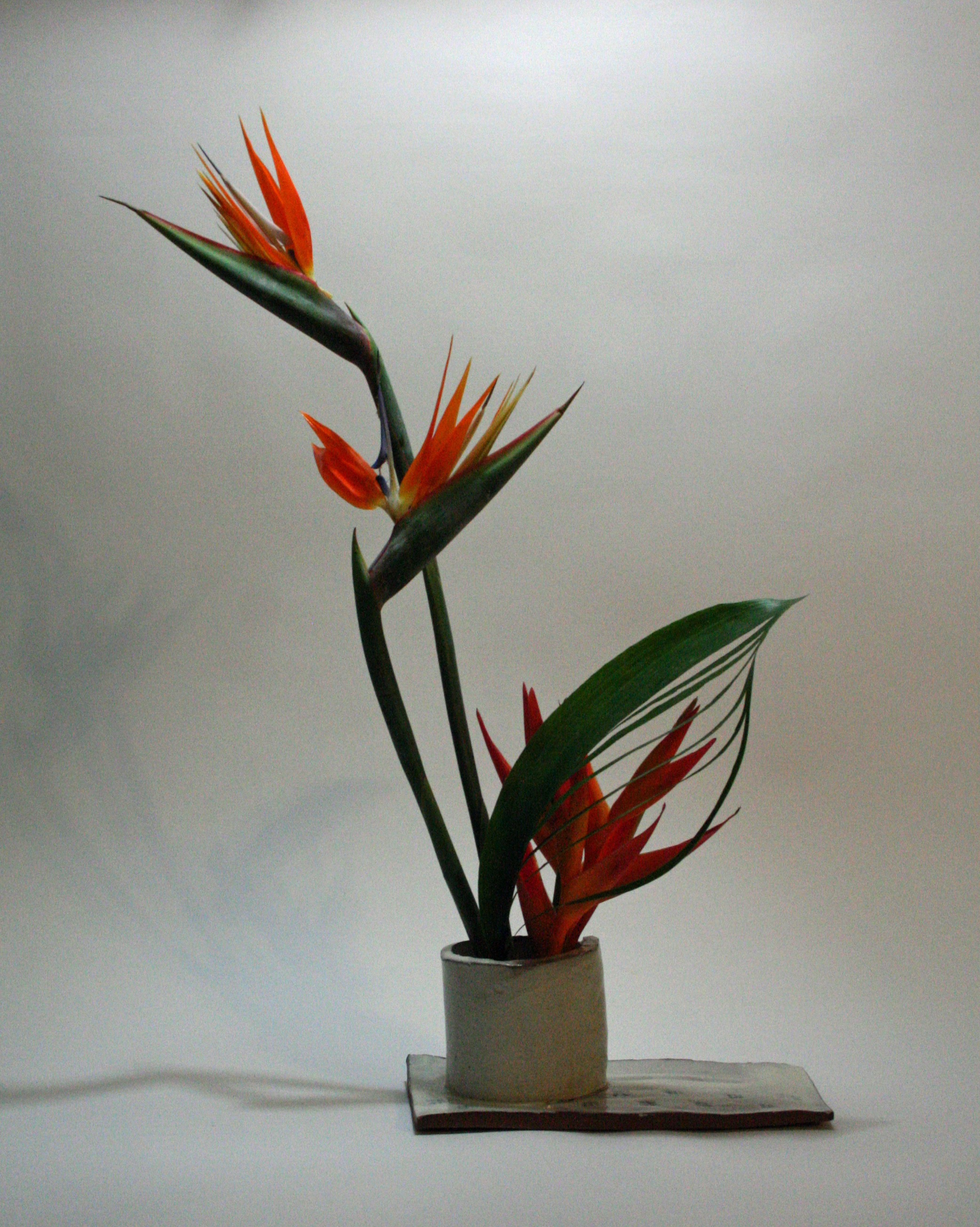 Self Made Vase With Bird Of Paradise Pencil Heliconia And