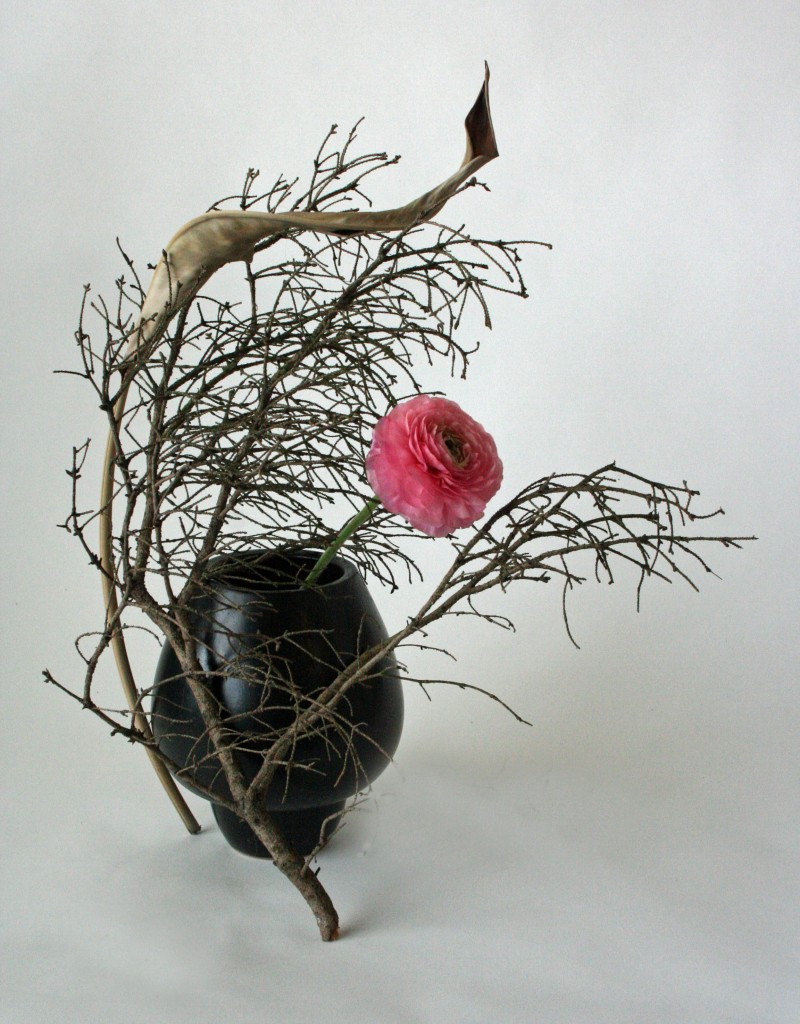 Ranunculus and dried branches