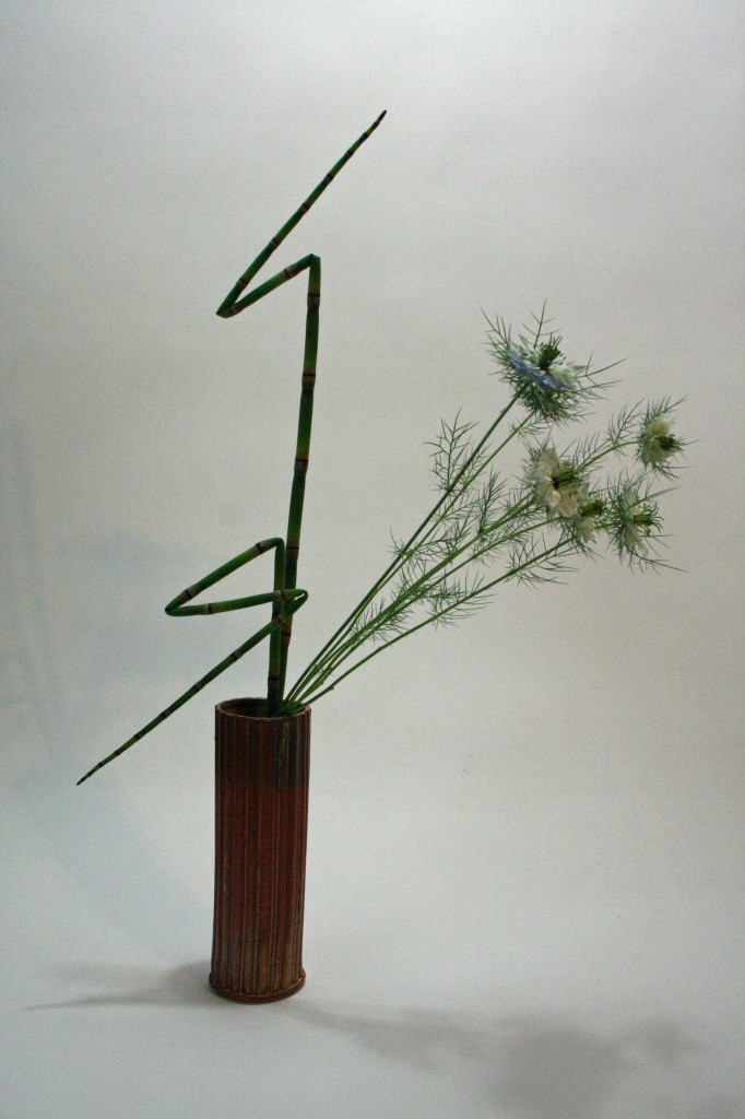 Equisetum and nigella