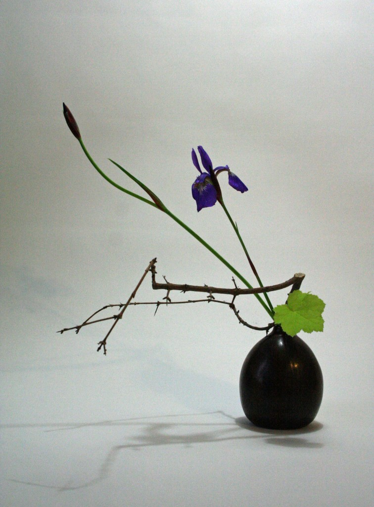 Pomegranate branche, iris and heuchera