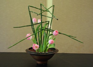 Fringed Pink Tulips and Equisetum